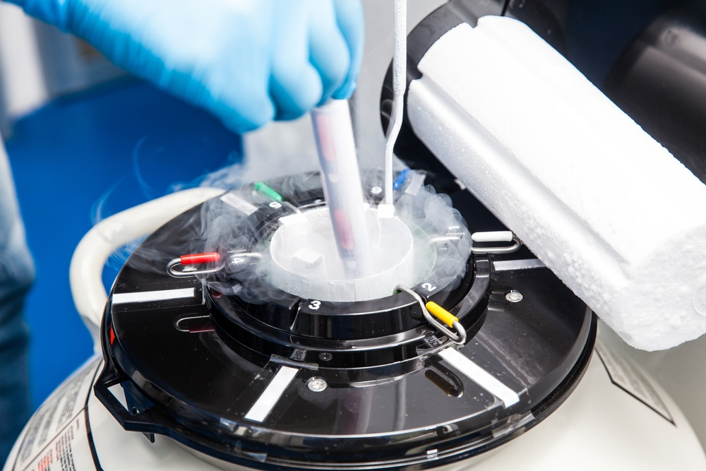 What Are the Success Rates of Using Frozen Embryos in Your IVF Cycle