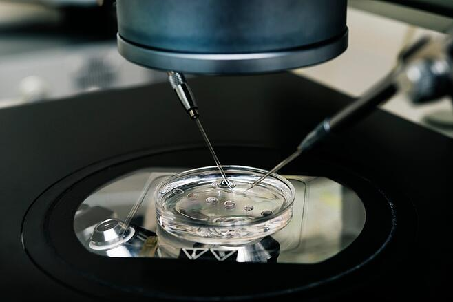 The evolution of fertility treatments and the developement of IVF
