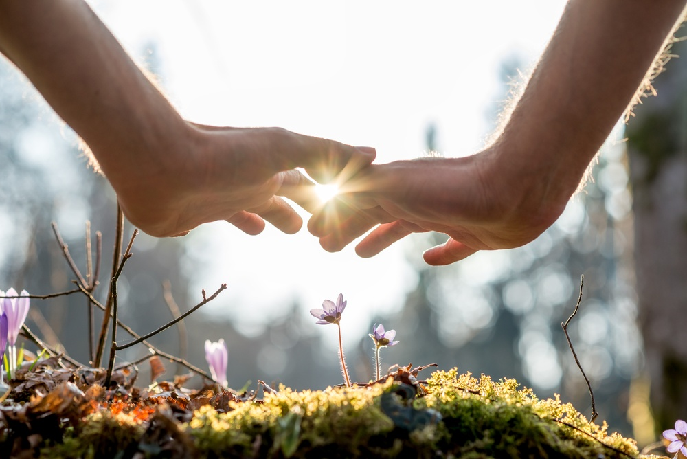 understanding your healing process dealing with hardship.jpg